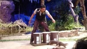 Recycling efforts by the Otters at the Creatures of the Night show