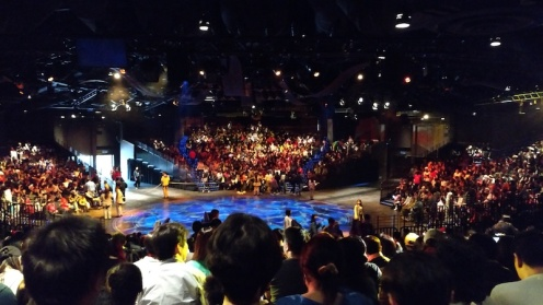 Full house at the Festival of the Lion King