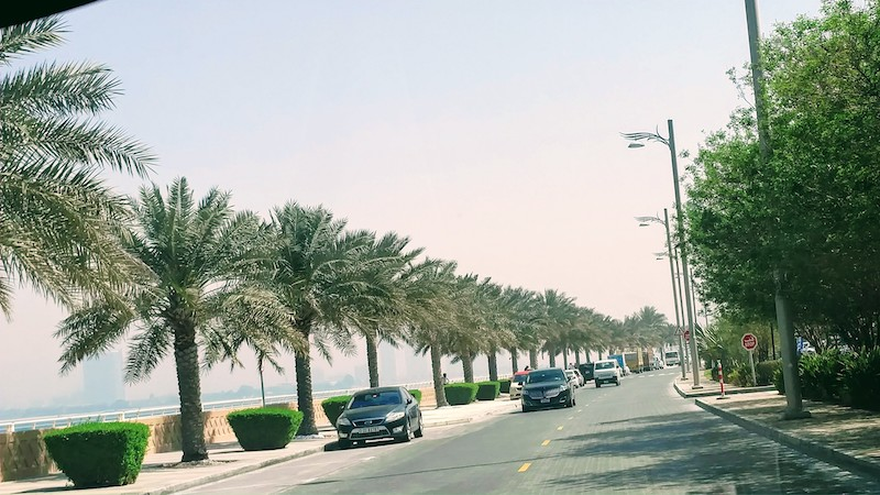 The tree-lined shoreline on the Crescent of the Palm Jumeirah