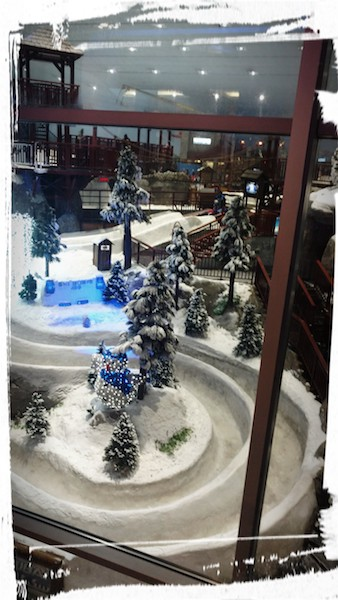 Glimpse of Ski Dubai