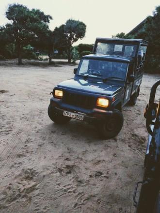 Off on the Jungle safari