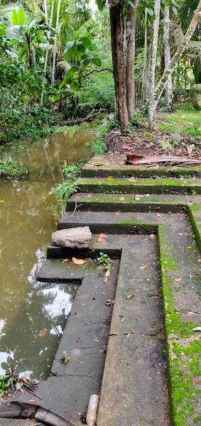The steps leading from the front yard to the narrow stream by the house