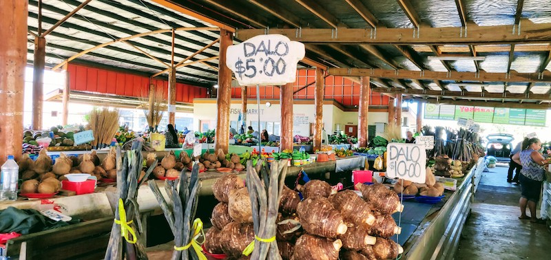 The taro or dalo - root vegetable