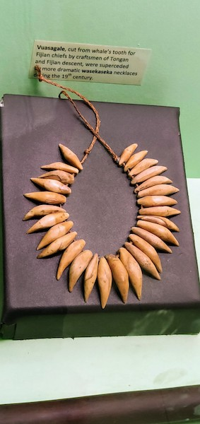 Whale tooth necklace