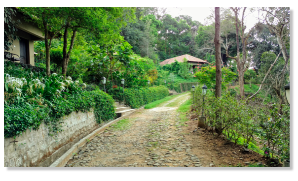 Villas at Old Kent Estate, Coorg
