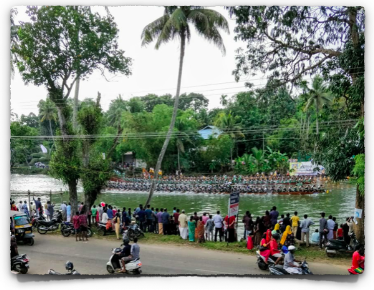 Boat race in Kerala during Onam on the Meenachil river, courtesy WhatsApp