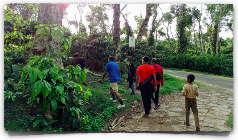 Nature walks in Coorg