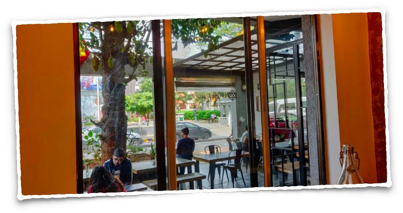 Jackfruit tree at Cafe Kaara